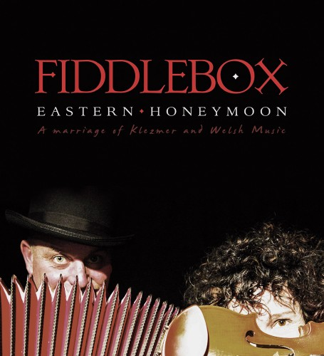 fiddlebox_EH_cover-1400x140 copy